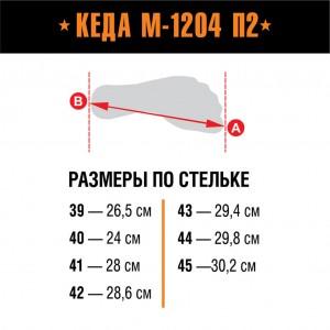 БЕРЦЫ КЕДА М-1204 П2